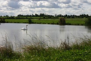 The Farm Burscough lake and farm walk